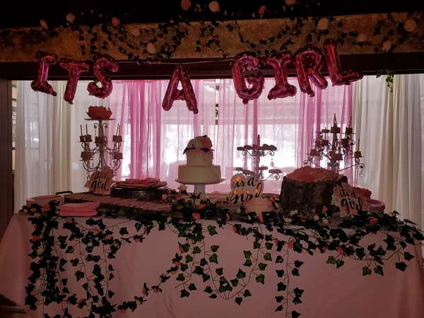Baby shower, private party