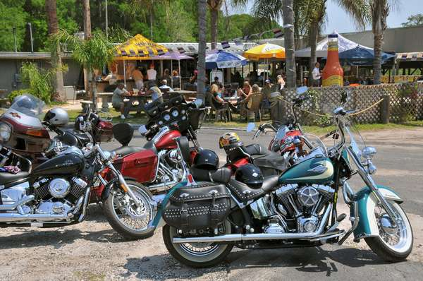 gator bay bikes and the patio
