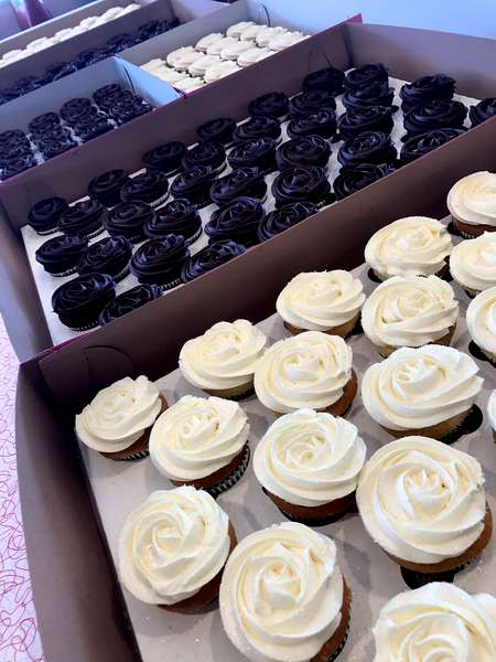 boxes of cupcakes