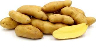 Potato Fingerling White
