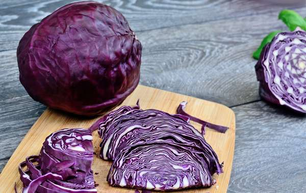Cabbage Red Foodservice