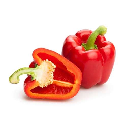 Pepper Red Bell Large Fresh
