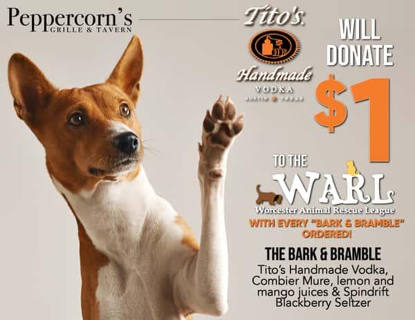 Bark & Bramble - Donation Special!
