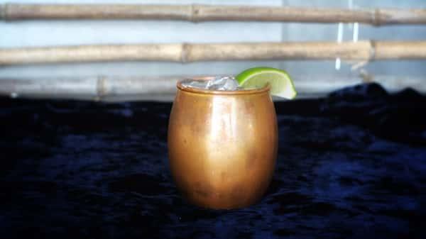 Mexico Mule