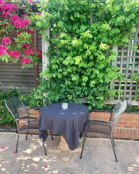 Patio Day 2020