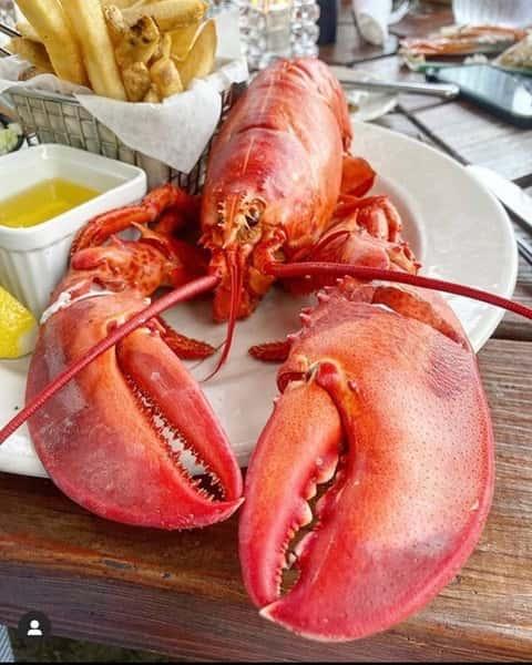 Lobster 2020