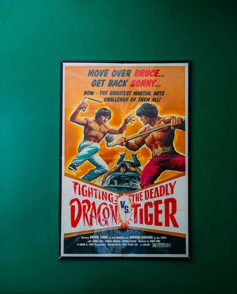 Fighting Dragon vs Deadly Tiger poster