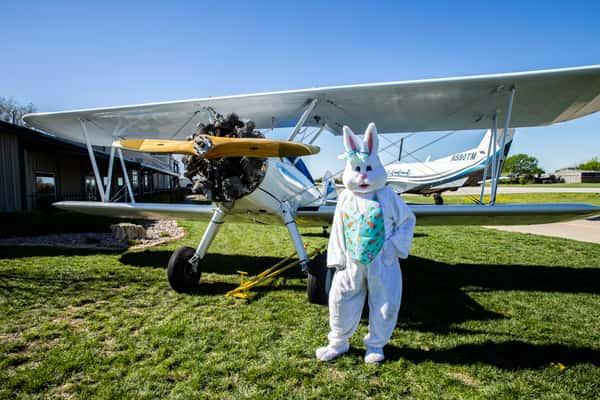 bunny and plane