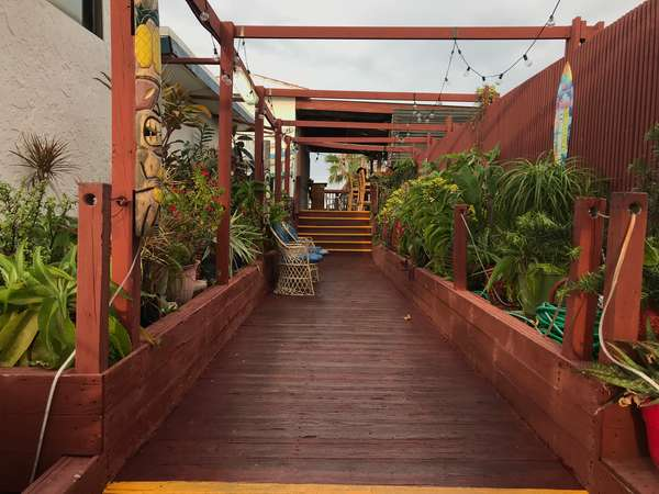 deck and plants