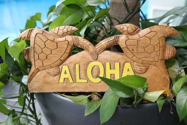 aloha sign