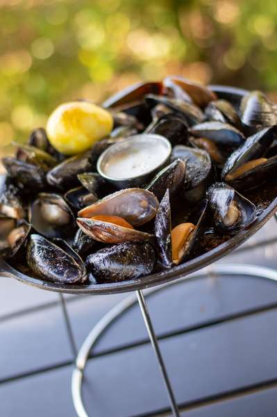 Black Iron Mussels
