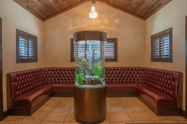interior fish tank