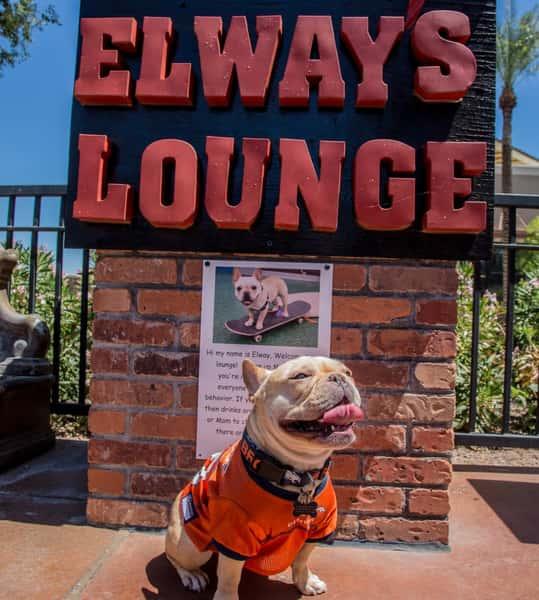 Elway's Lounge