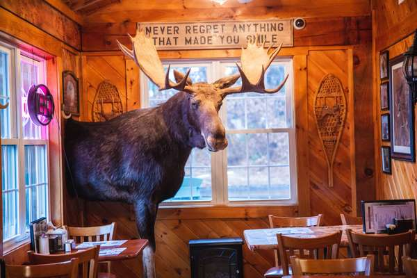 Moose at Entrance of Michael's Bridge Diner