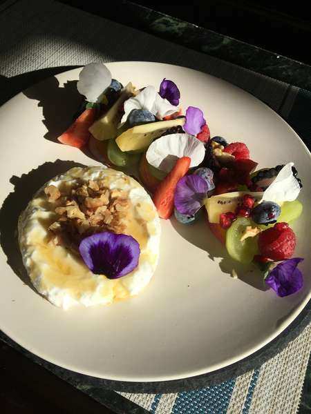 Fruit and Yogurt Salad