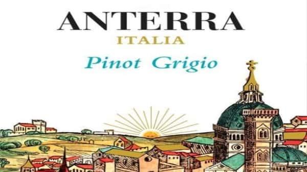 Pinot Grigio, Anterra