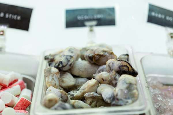 9. Oysters*