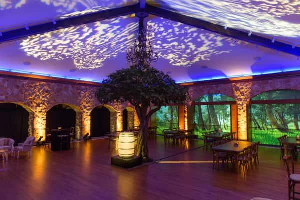 event decor lighting