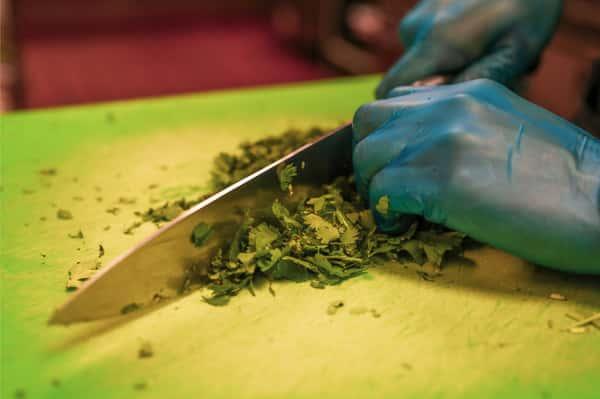cutting cilantro