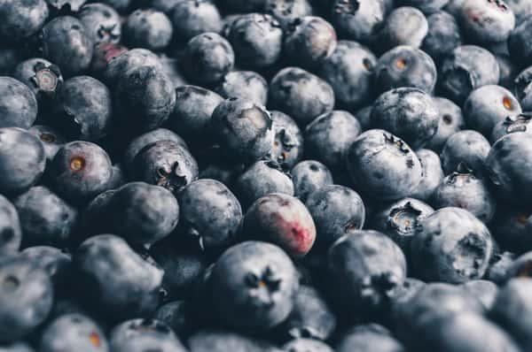 Blueberry Quart Pre-Pick Order