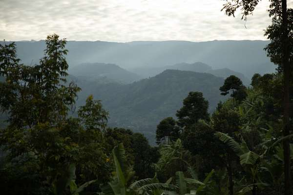 Kenya Mt Elgon
