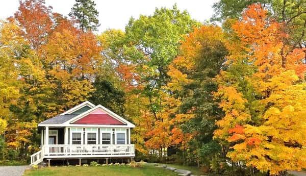 pine-cone-cottage-1081-690 (1)
