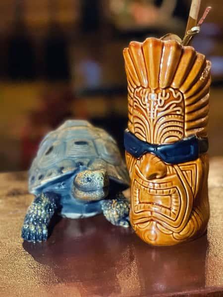 Tikinator & Turtle