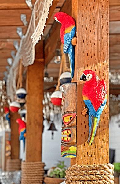 Parrots on the Bar at Tiki