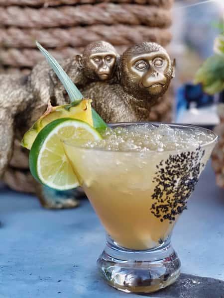 The Sandbar and monkey