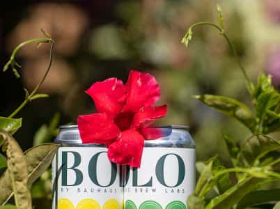Flower atop of two cans of BOLO