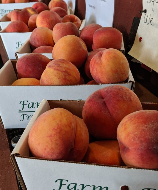 Tree Ripened Peaches